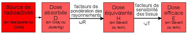 les unités de la radioactivité